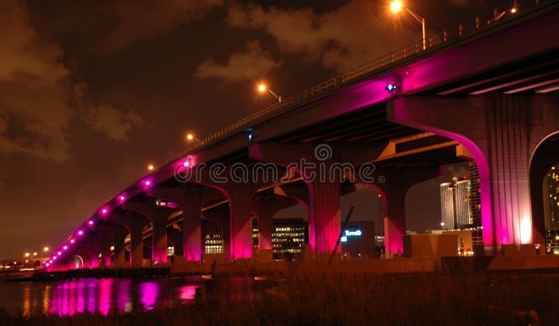 Ponte de Miami na noite fotos de stock royalty free
