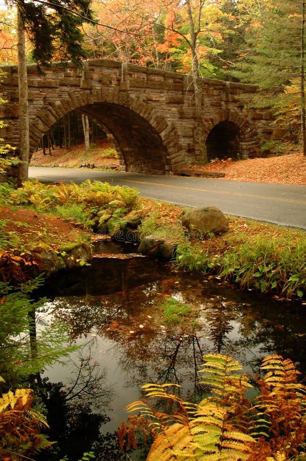 Ponte de pedra arqueada Acadia imagem de stock royalty free