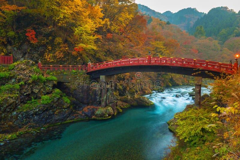 Ponte de Shinkyo durante o outono em Nikko foto de stock
