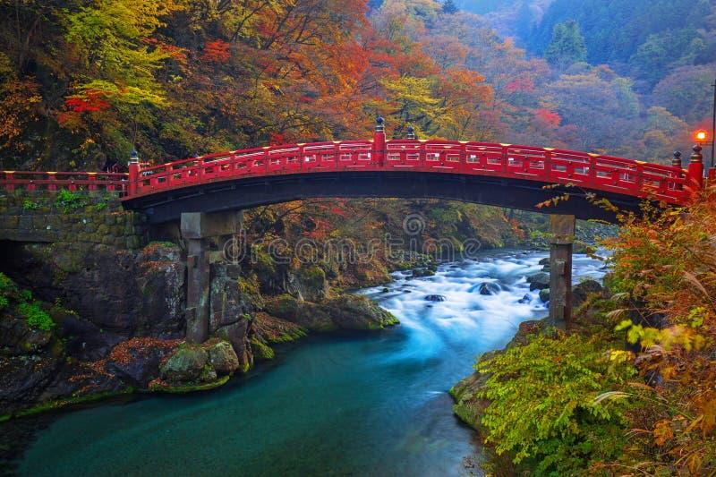 Ponte de Shinkyo durante o outono em Nikko, Japão fotografia de stock