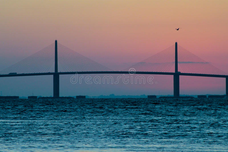 Ponte de Skyway da luz do sol no nascer do sol com pássaro foto de stock royalty free