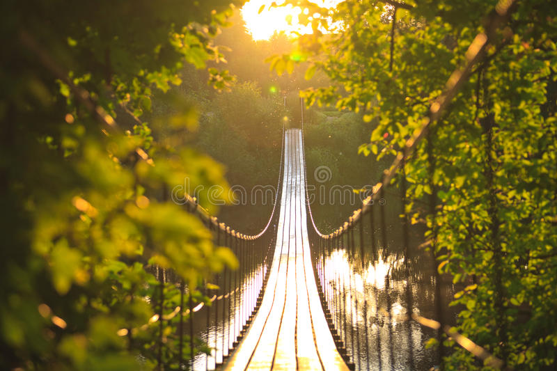 Ponte de suspensão foto de stock royalty free