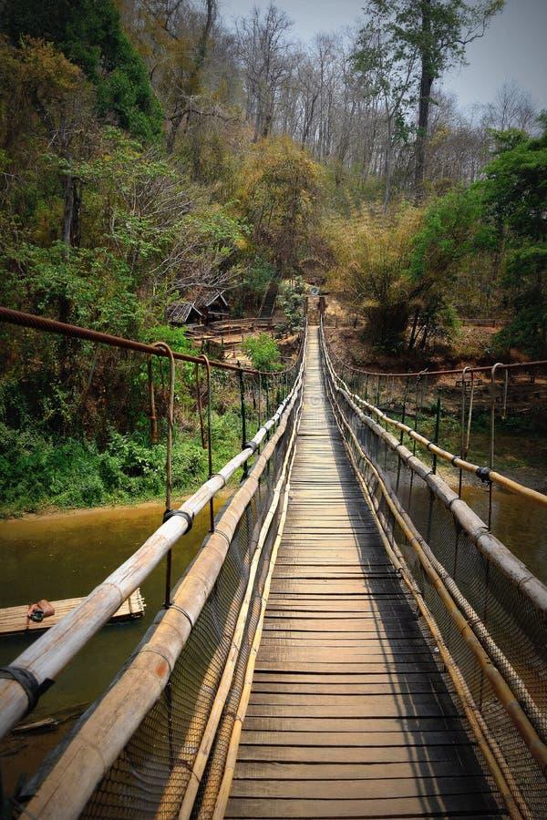 Ponte de suspensão fotografia de stock royalty free