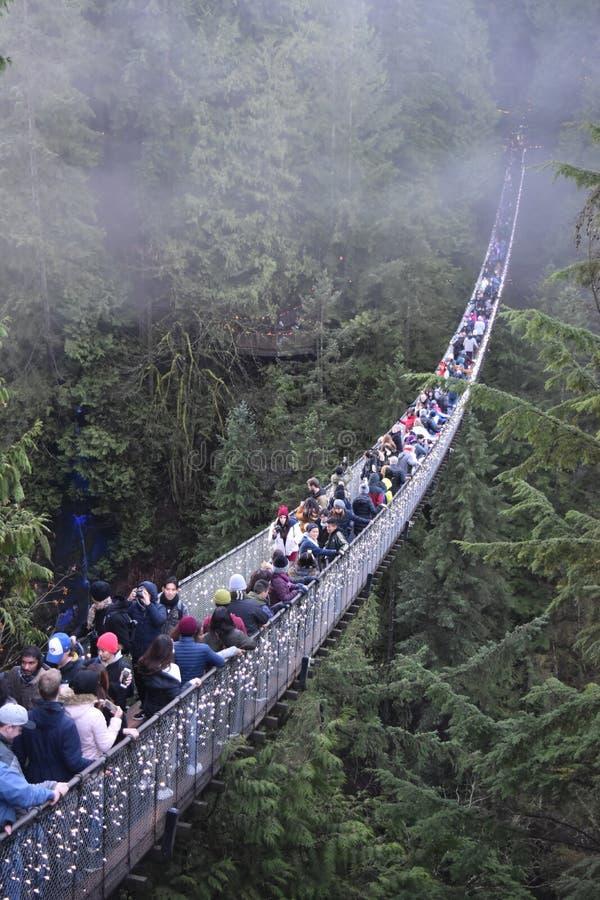 Ponte de suspensão de Capilano foto de stock