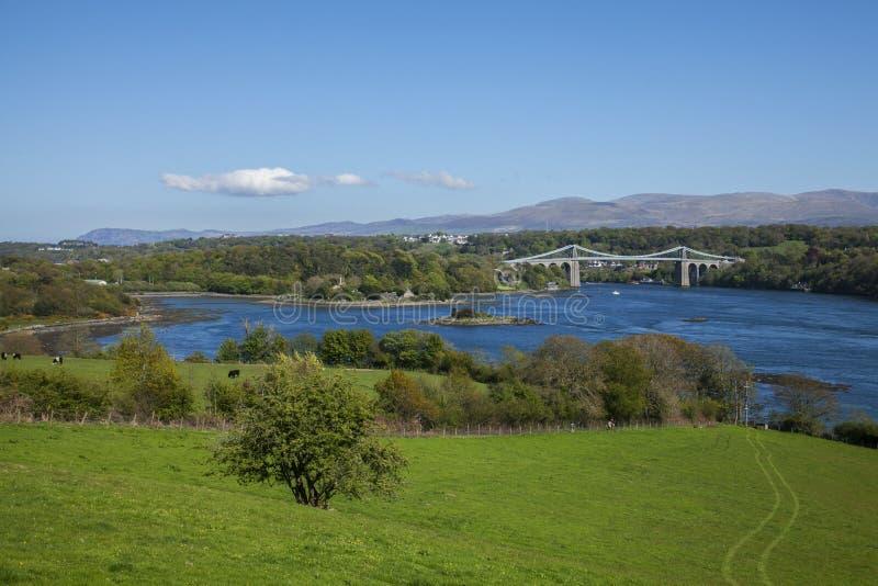 A ponte de suspensão de Menai, Gales - dia ensolarado imagem de stock royalty free