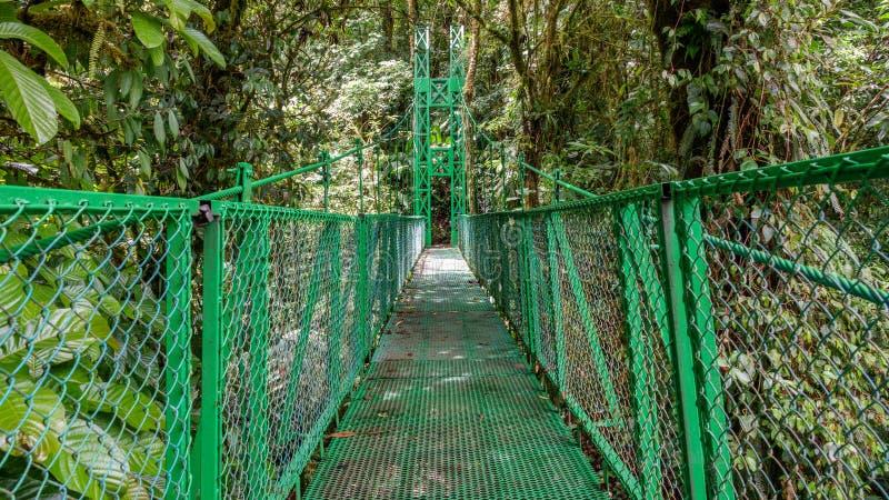 Ponte de suspensão verde na floresta úmida de Monteverde imagens de stock royalty free