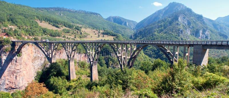 Ponte de Tara imagem de stock royalty free