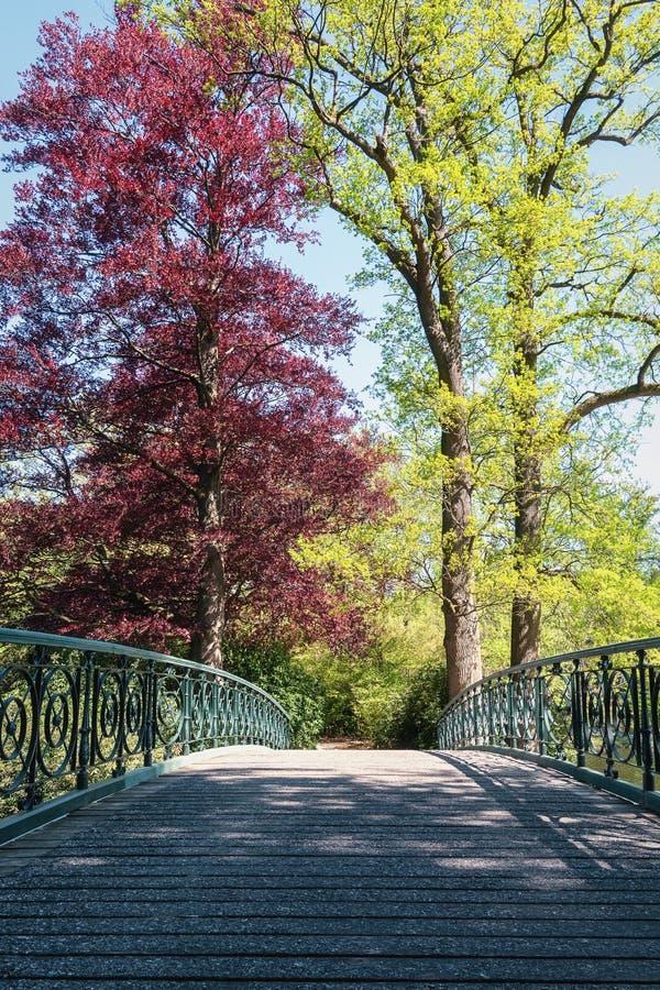 Ponte decorativa no parque do gabinete imagem de stock