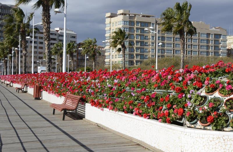 Ponte dei fiori a Valencia, Spagna fotografie stock
