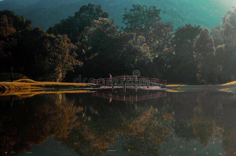 Ponte del lago immagine stock