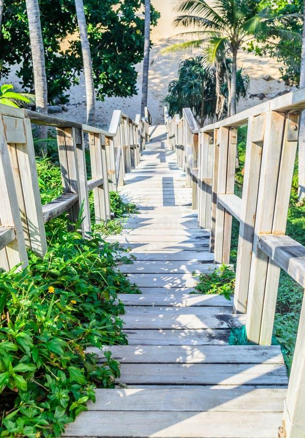Ponte del legname alla spiaggia fotografia stock