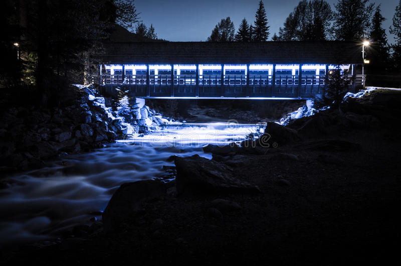 Ponte del piede dell'insenatura di Fitzsimmons alla notte fotografia stock