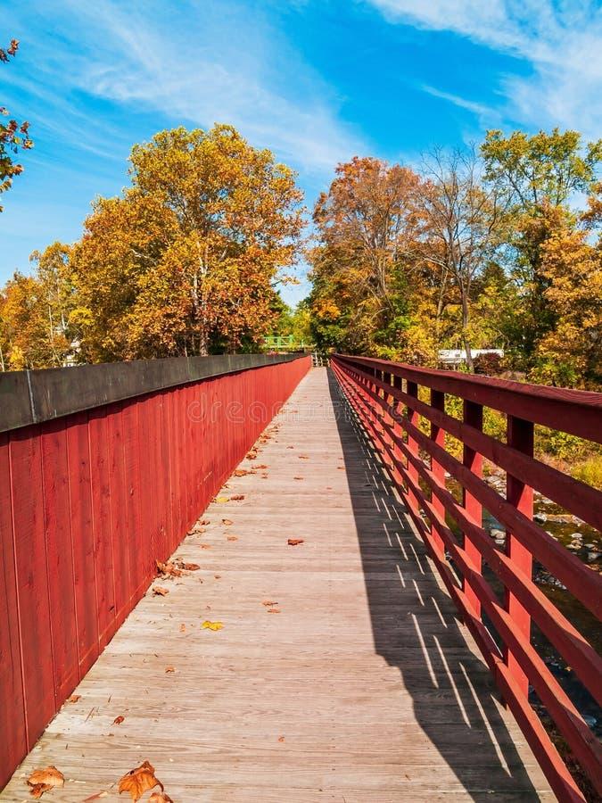 Ponte del piede sopra insenatura fotografia stock libera da diritti