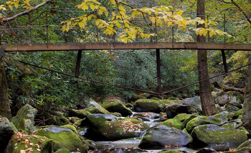 Ponte del piede sopra la torrente montano fumosa con il fogliame di caduta immagini stock libere da diritti