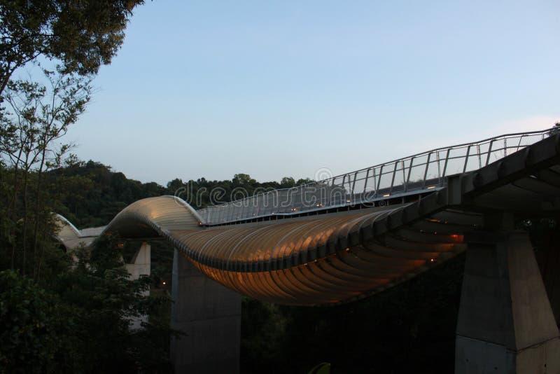 Ponte dell'onda di Henderson immagine stock libera da diritti