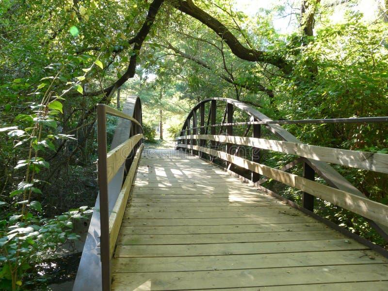 Ponte della corrente con gli alberi fotografia stock