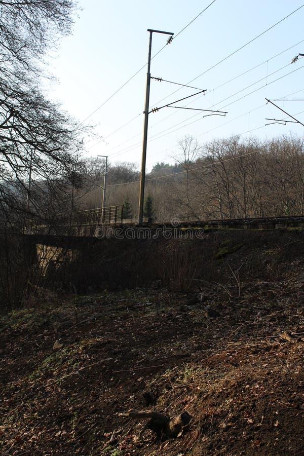 Ponte della ferrovia del treno immagine stock libera da diritti