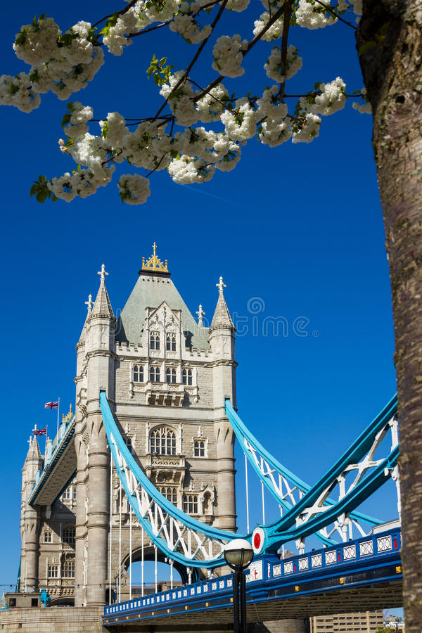 Download Ponte Della Torre In Primavera Fotografia Stock - Immagine di grande, monumento: 30831880