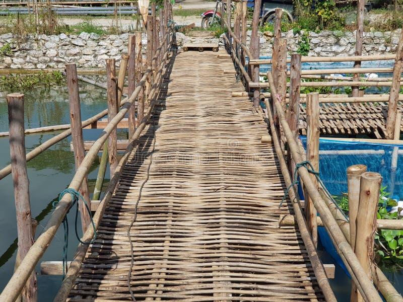 Ponte di camminata di modo fatto di bambù asciutto immagini stock libere da diritti