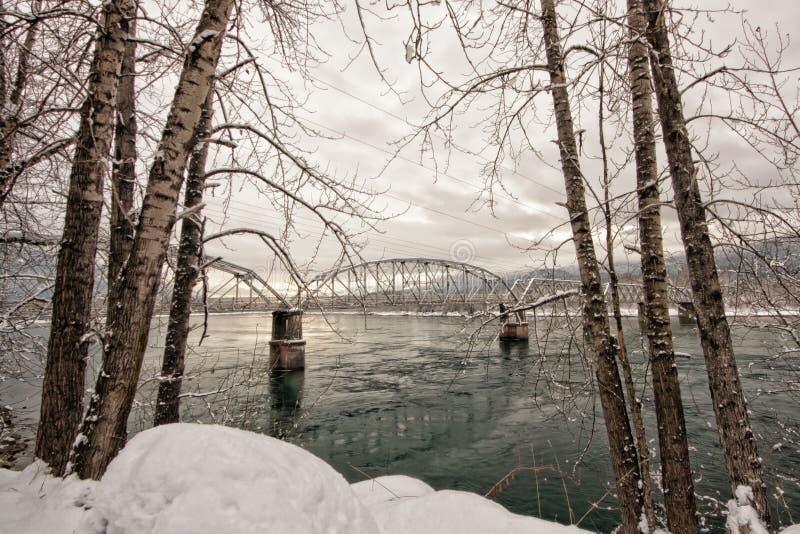 Ponte di cavalletto incorniciato albero di inverno fotografia stock