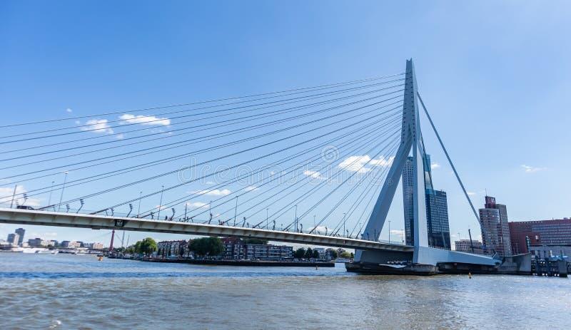 Ponte di ERASMUS e di paesaggio urbano, giorno soleggiato Rotterdam, Paesi Bassi immagine stock