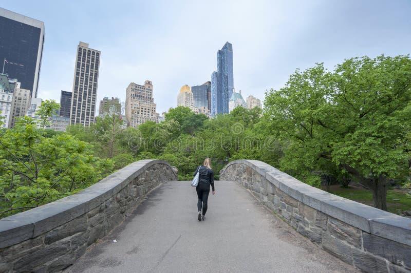 Ponte di Gapstow in Central Park New York immagine stock libera da diritti