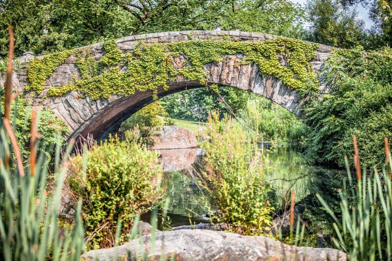 Ponte di Gapstow con pianta in Central Park fotografia stock