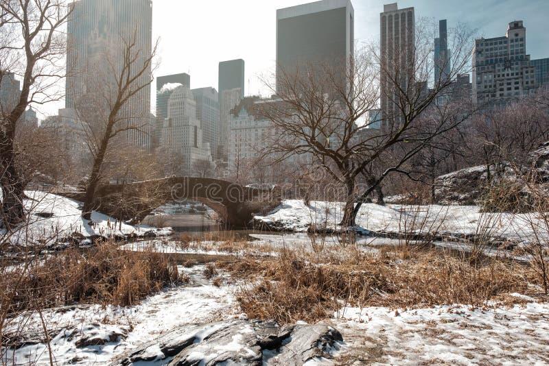 Ponte di Gapstow del Central Park con neve nell'inverno immagini stock libere da diritti