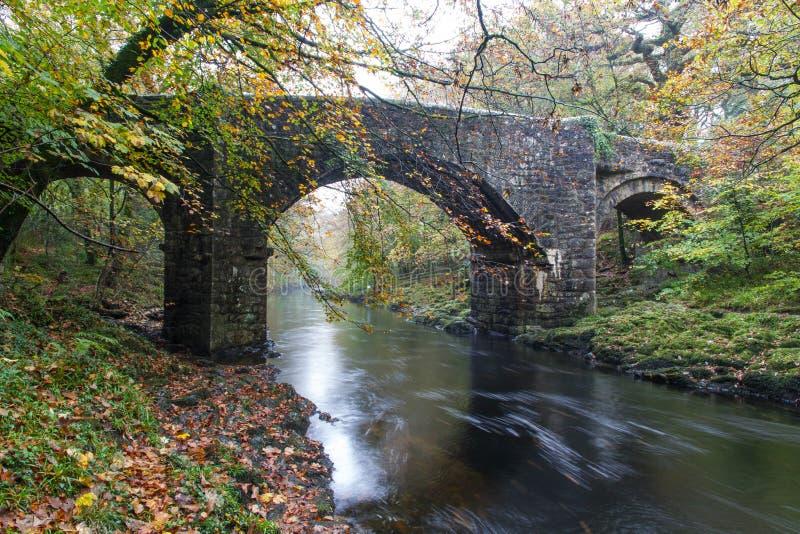 Ponte di Holne, incrocio di pietra medievale, dardo del fiume, Dartmoor, inglese immagine stock libera da diritti