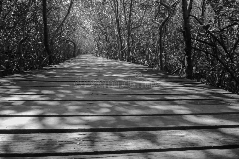 Ponte di legno in bianco e nero fotografia stock libera da diritti