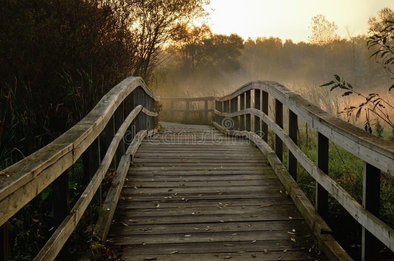 Ponte di legno del piede nel primo mattino fotografia stock libera da diritti