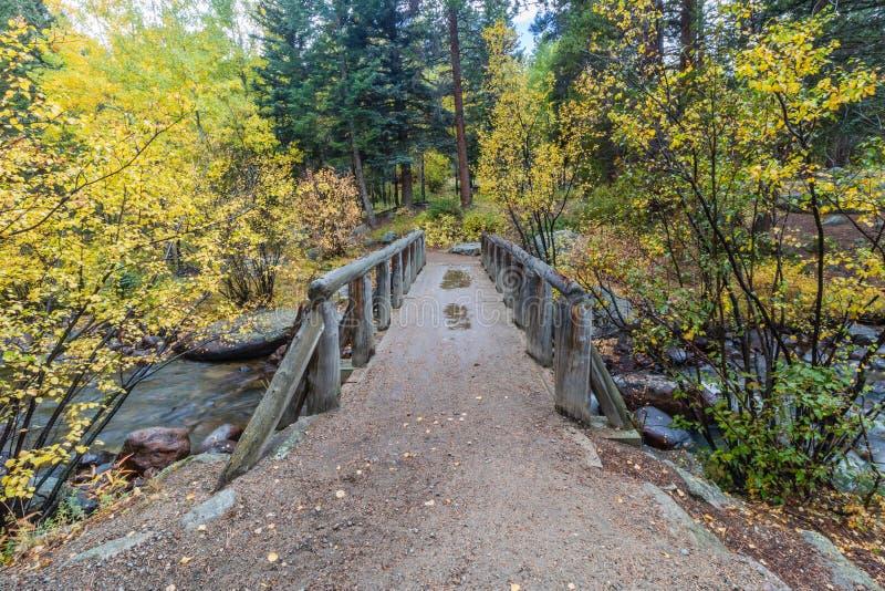Ponte di legno del piede sopra la corrente immagine stock
