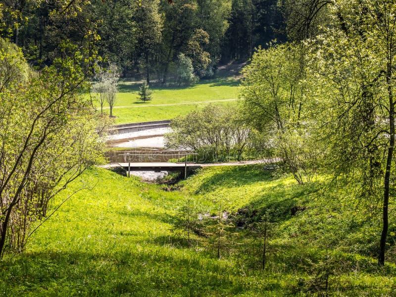 Ponte di legno nel Forest Park un giorno soleggiato immagini stock