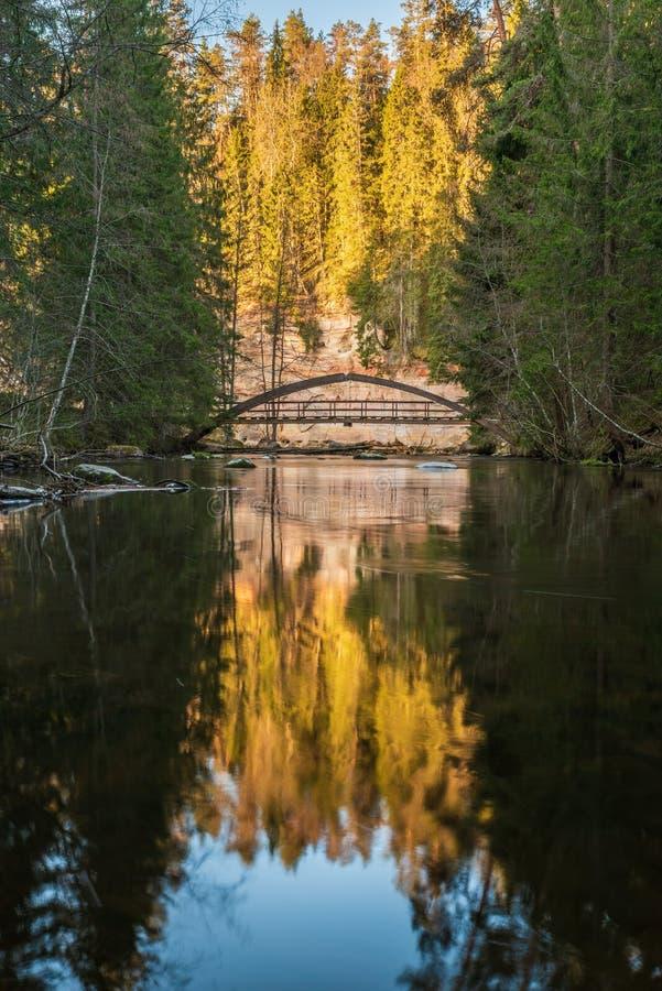 Ponte di legno sopra il piccolo fiume in legno fotografia stock