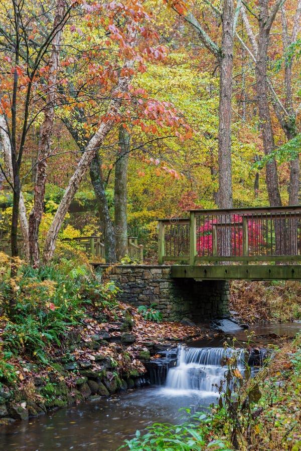 Ponte di legno sopra un'insenatura con il fogliame di caduta variopinto ai giardini di Gibbs, Georgia fotografia stock
