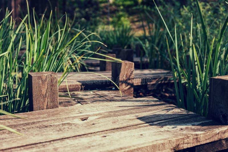 Ponte di legno sotto lo stagno artificiale meraviglioso fotografia stock libera da diritti