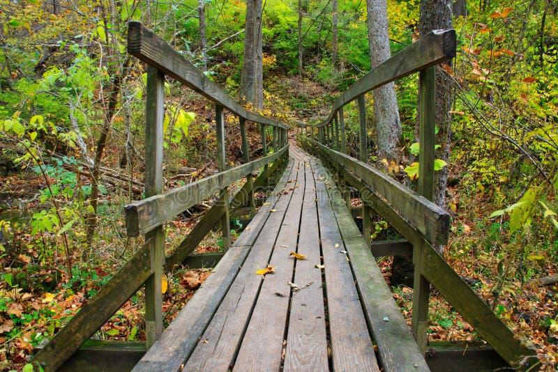 Ponte di legno traballante del piede immagine stock