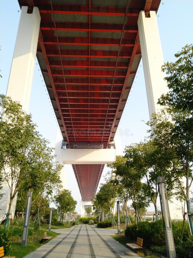 Ponte di Nanpu a Shanghai immagine stock