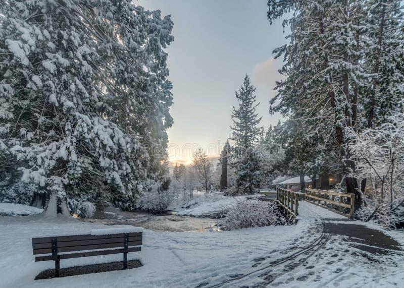 Ponte di Snowy immagini stock