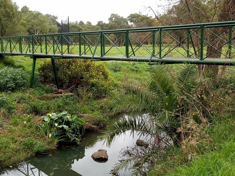 Ponte do campo de golfe fotos de stock