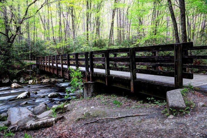 Ponte do dente de Great Smoky Mountains Kephart imagem de stock royalty free