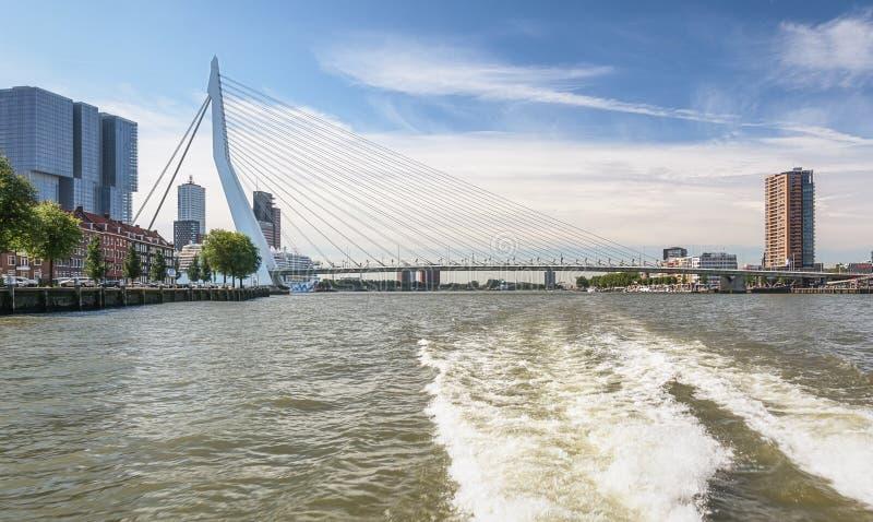 Ponte do Erasmus e para a construção o Rotterdam ao longo do Wilh foto de stock royalty free