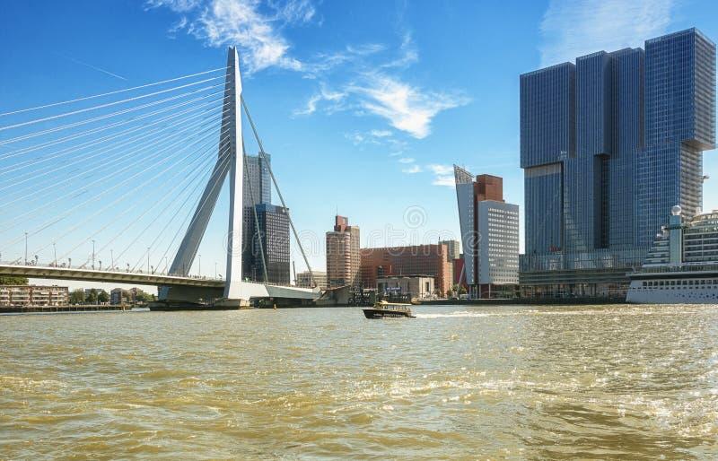 Ponte do Erasmus e para a construção o Rotterdam ao longo do Wilh imagens de stock royalty free