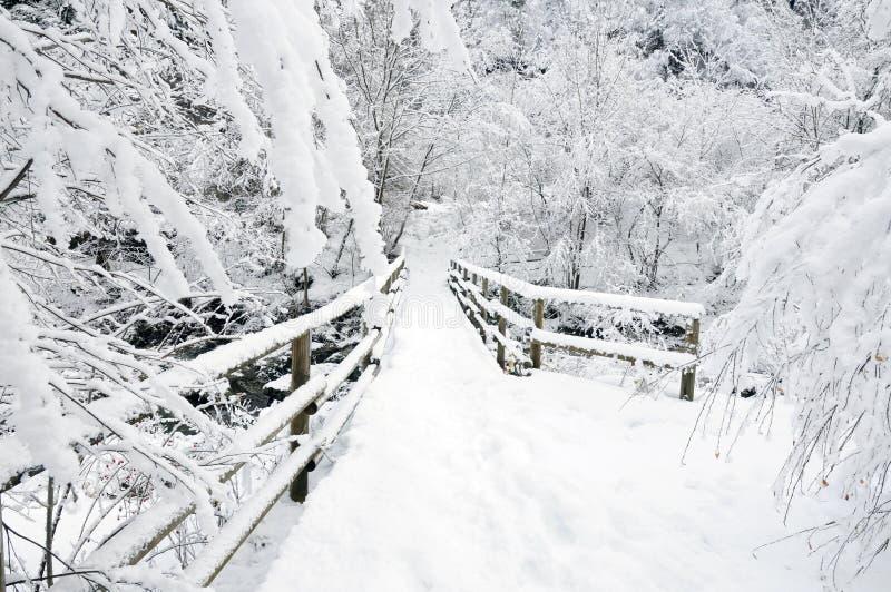 Ponte do inverno fotografia de stock royalty free