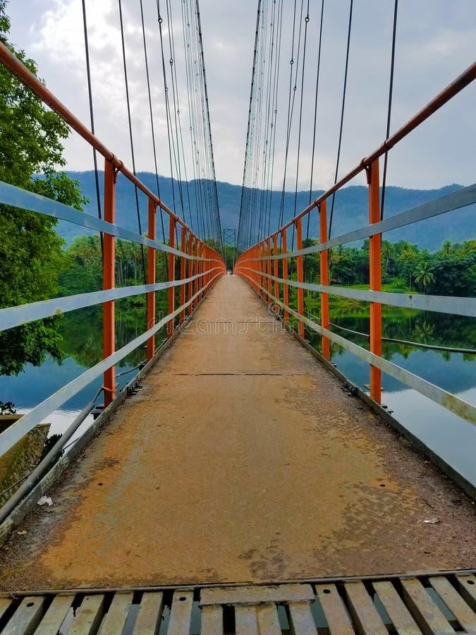 Ponte do pé da suspensão em Kerala fotos de stock
