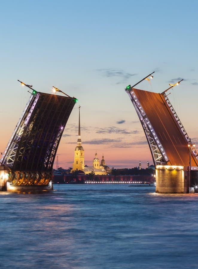 Ponte do palácio, Peter Paul Cathedral Noites brancas St Petersburg, Rússia fotos de stock royalty free