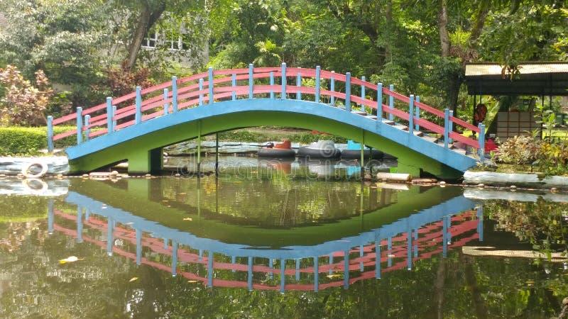 Ponte do parque fotografia de stock