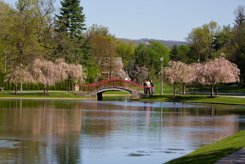 Ponte do parque do lago na mola fotos de stock royalty free