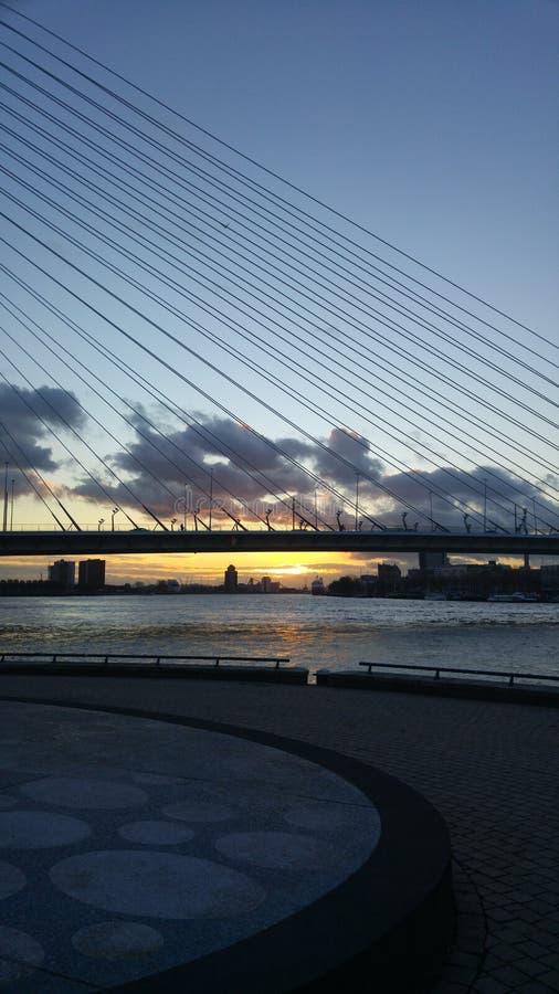 Ponte do por do sol de Rotterdam imagem de stock royalty free