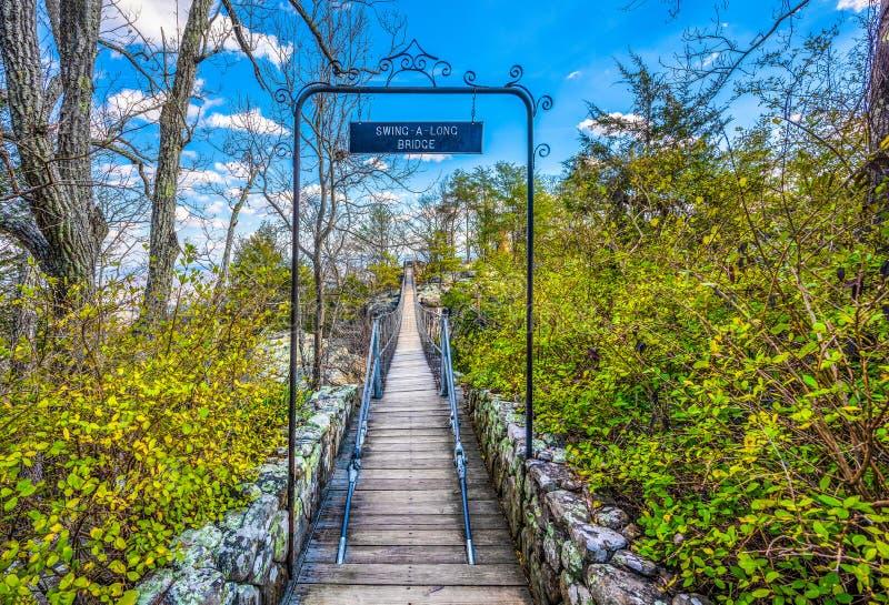 Ponte dos jardins da cidade da rocha em Chattanooga, Tennessee imagem de stock